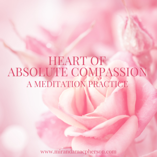 Heart of Absolute Compassion a downloadable guided meditation by spiritual teacher Miranda Macpherson
